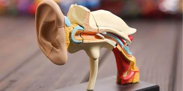 Microscopic-Ear-Surgery